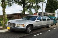 Cadillac Fleetwood Limousine In het Wild