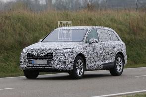 Audi bevestigt productieplannen Q8