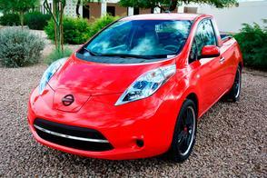 Kruisbestuiving: Nissan Leaf 'Sparky'