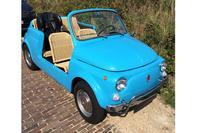 Fiat 500 'Jolly' In het wild