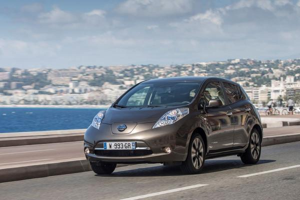 Business Edition voor Nissan Leaf 30kWh