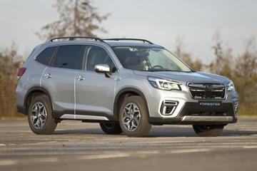 Subaru Forester ook als Van met grijs kenteken