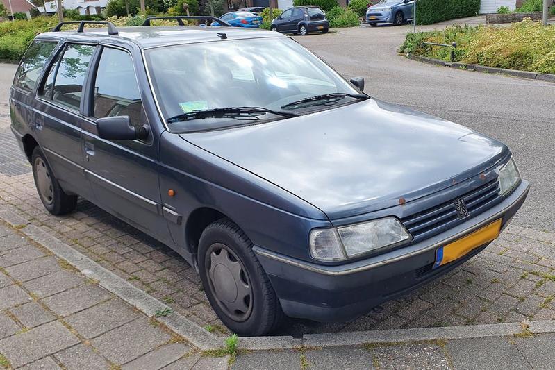 In het Wild Peugeot 405