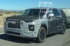 Hyundai 'Palisade' duikt op