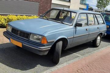 Peugeot 305 Break (1983) - In het Wild