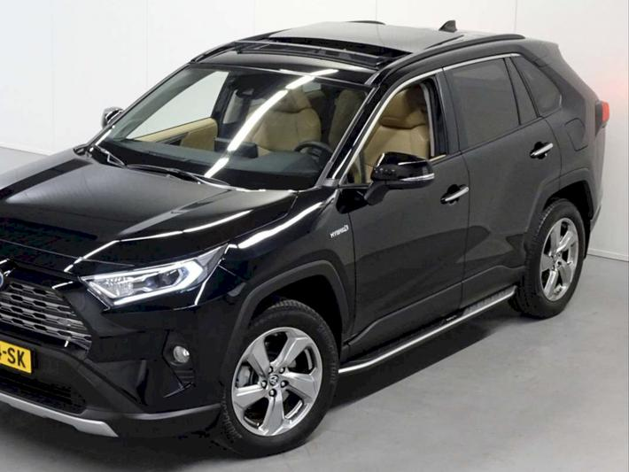 Toyota RAV4 2.5 Hybrid AWD Executive (2019)