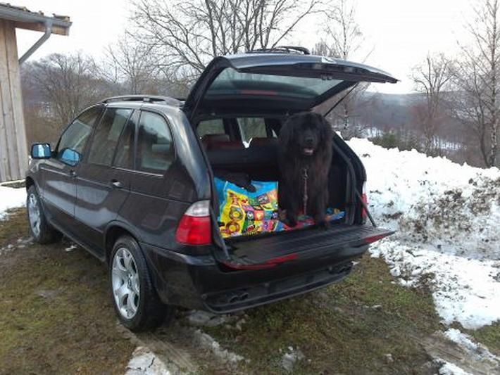 BMW X5 4.4i Executive (2001)