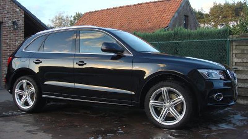 Audi Q5 3.0 TDI quattro Pro Line S (2011)