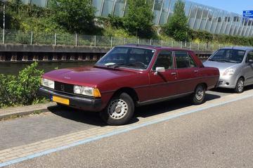 In het Wild: Peugeot 604 (1979)