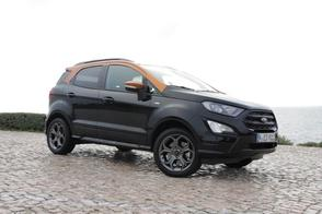 Ford Ecosport - Rij-impressie
