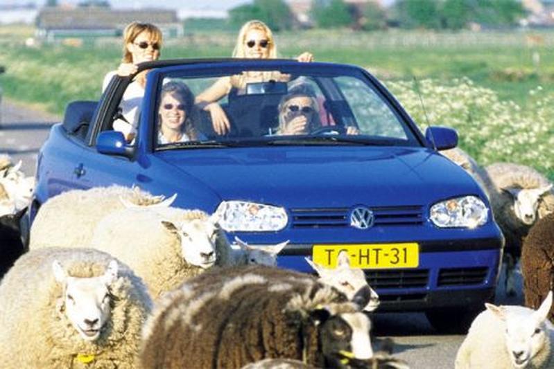 Volkswagen Golf Cabriolet 1.8 75pk Trendline (1999)