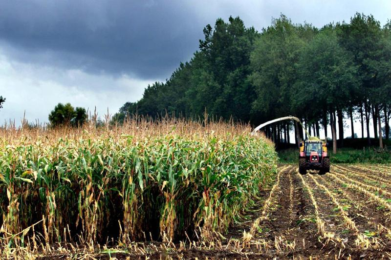 Kabinet stelt doelstellingen biobrandstoffen bij