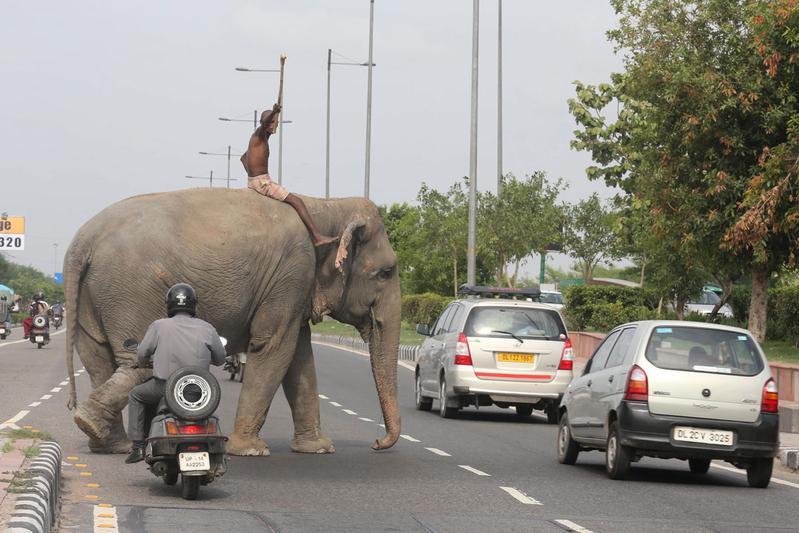 India: eerst goede wegen, dan veiligere auto's