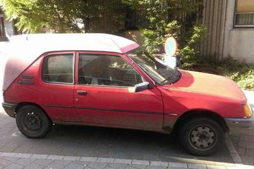 In het wild: Peugeot 205 Commercial Terberg (1995)