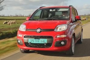 Fiat Panda - Occasion Aankoopadvies