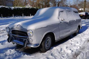 Peugeot 403 (1961) - In het Wild