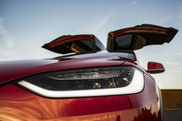 Bomenkap op beoogde Duitse Tesla-terrein stilgelegd