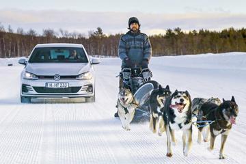 Winterbandentest Sport 2020 245/40R18