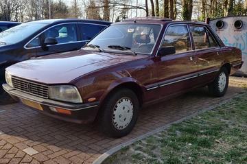 Peugeot 505 (1983) - In het Wild