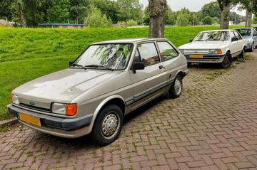 Ford Fiesta en Ford Granada - In het Wild