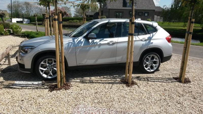 BMW X1 sDrive20i Executive (2014)