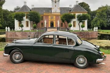 Jaguar Mk2 - In het Wild